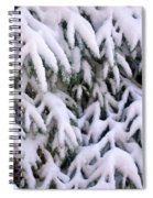 Snow Laden Branches Spiral Notebook