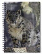 Snow Leopard 1 Spiral Notebook