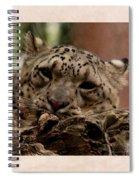 Snow Leopard 17 Spiral Notebook