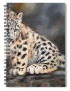 Snow Leopard Cub Spiral Notebook