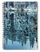 Snow Mirror Spiral Notebook