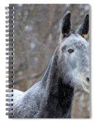 Snow Mule Spiral Notebook