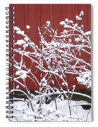 Snow On Burdock Burr Weed Against Red Barn Siding Spiral Notebook