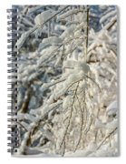Snow On Ice Spiral Notebook