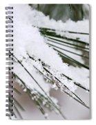 Snow On Pine Needles Spiral Notebook