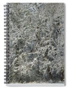 Snow On Trees Spiral Notebook