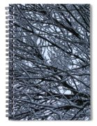 Snow On Twigs Spiral Notebook