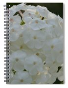 Snow Phlox Spiral Notebook