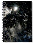 Snow Rays Spiral Notebook