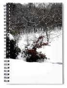 Snow Scene 6 Spiral Notebook