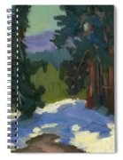 Snow Shadows Mammoth Mountain Spiral Notebook