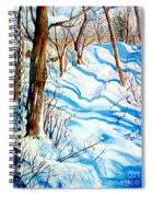 Snow Shadows Spiral Notebook