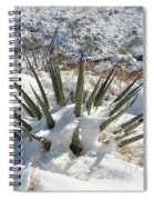 Snow Spines Spiral Notebook