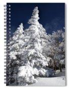 Snow Spruce Sunshine Spiral Notebook