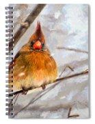 Snow Surprise - Painterly Spiral Notebook