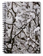 Snow Tree Spiral Notebook