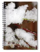 Snow Twig Abstract Spiral Notebook