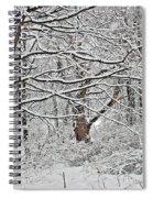 Snow White Forest Spiral Notebook