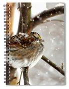 Snowball Spiral Notebook