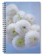 Snowballs-pom Mum Spiral Notebook