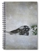 Snowbird Spiral Notebook