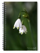 Snowdrop Duet Spiral Notebook