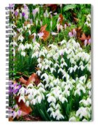 Snowdrops And Crocuses Spiral Notebook