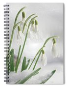 Snowdrops On Ice Spiral Notebook