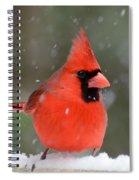 Snowflake Cardinal Spiral Notebook