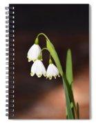 Snowflake Flowers Spiral Notebook