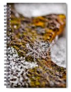 Snowflake On Rust Spiral Notebook