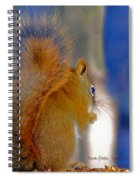 Snowflake Squirrel At Sunset Spiral Notebook