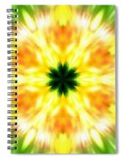 Snowflake Sunburst Spiral Notebook