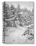 Snowing At The Forest Spiral Notebook