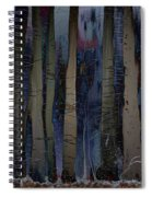 Snowing In The Ice Forest At Night Spiral Notebook