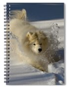 Snowplow Spiral Notebook