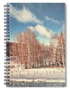 Snowy Aspens  Spiral Notebook
