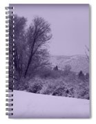 Snowy Bench In Purple Spiral Notebook