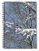 Snowy Branches With Blue Sky Spiral Notebook