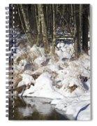 Snowy Creek Spiral Notebook