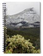 Snowy Desert Mountain Spiral Notebook