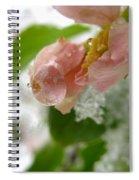 Snowy Drop Spiral Notebook