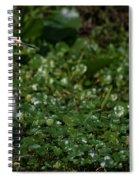 Snowy Egret 3 Spiral Notebook