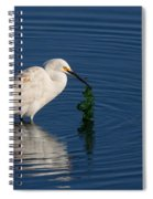 Snowy Egret Catches Sushi And Seaweed Spiral Notebook