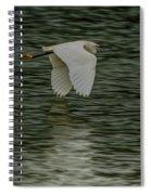 Snowy Egret On Estuary Spiral Notebook