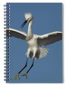 Snowy Egret Photo Spiral Notebook