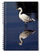 Snowy Egret Reflection  Spiral Notebook