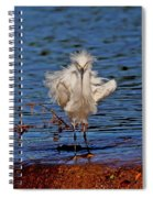 Snowy Egret With Yellow Feet Spiral Notebook