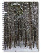 Snowy Forest In Acadia Spiral Notebook