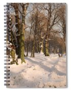 Snowy Forest Road 1908 Spiral Notebook